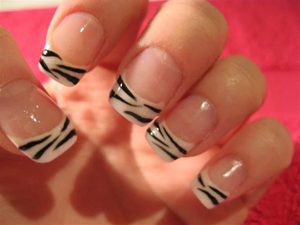 French-zebra
